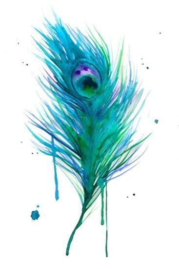 Niebiesko-zielone pawie pióro