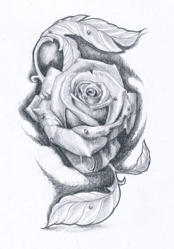 Róża I Liście Tatuaż Wzór