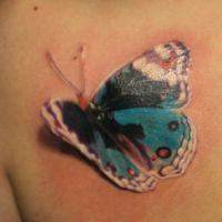Tatuaż motyl 3d kolor