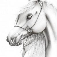 Biały koń tatuaż wzór