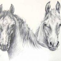 Dwa konie tatuaż wzór