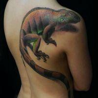 Gekon tatuaż jaszczurki