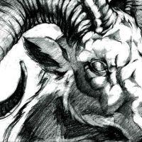 Głowa barana znak zodiaku