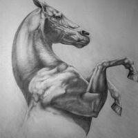 Koń z uniesionymi kopytami