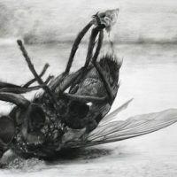 Martwa mucha wzór tatuażu