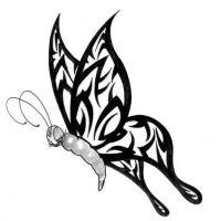 Motyl tribalowe skrzydła