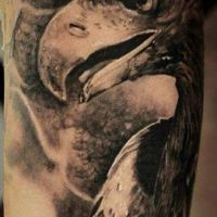 Głowa ptaka tatuaż