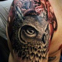 Głowa sowy tatuaż części