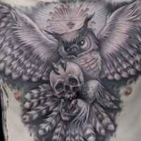 Sowa z czaszką w pazurach tatuaż