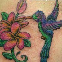 Kwiaty plumerii i koliber tatuaż