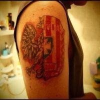 Połowa orła i herbu Resovia Rzeszów