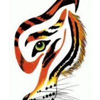 Połowa twarzy tygrysa