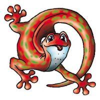 Pomarańczowa jaszczurka wzór