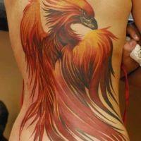 Pomarańczowy feniks tatuaż