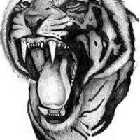Pysk tygrysa z ostrymi zębami