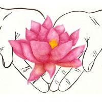 Różowy kwiat lotosu