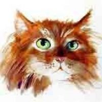 Rudy kot wzór tatuażu