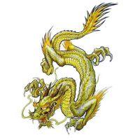 Smok w żółtym kolorze wzór tatuażu