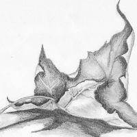 Suchy liść tatuaż wzór