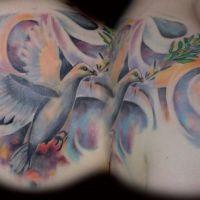 Tatuaż gołąb z gałązką oliwną