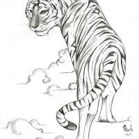 Tygrys w obłokach wzór tatuażu