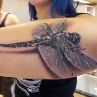 Ważka tatuaż w 3D