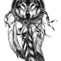 Wilk z piórami wzór tatuażu