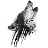 Wzór tatuażu głowa wilka