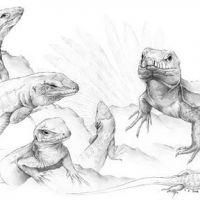 Wzór tatuażu z jaszczurkami