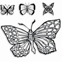Cztery wzory motyl tauaż