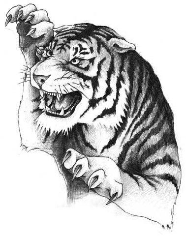 Tygrys z pazurami wzór tatuażu