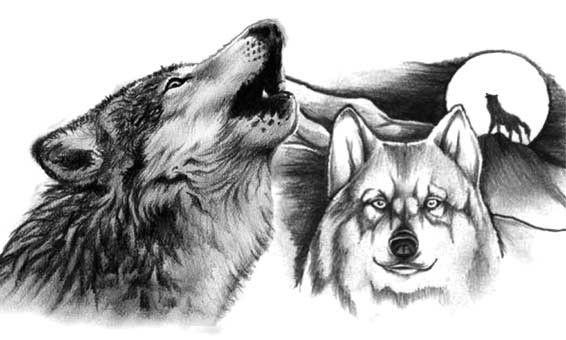Wzór Tatuażu Z Wilkami