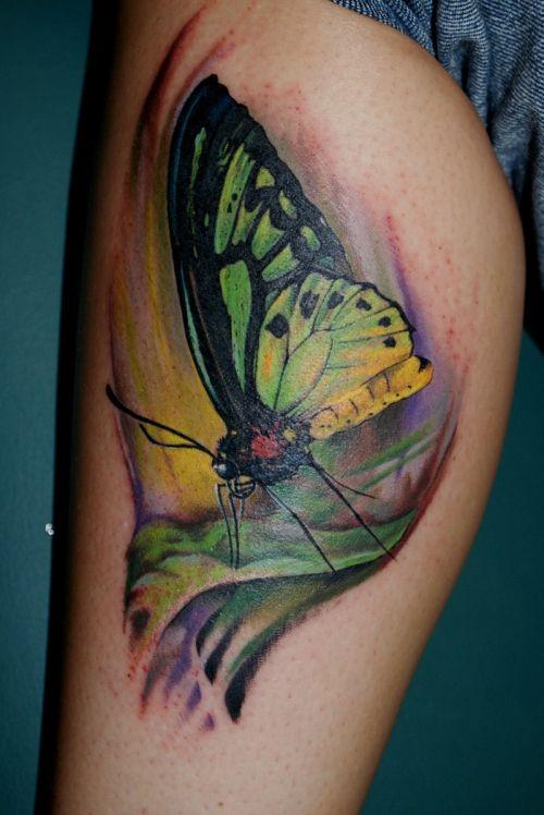 Zielono żółty Motyl Tatuaż