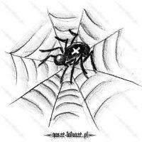 Pająk na pajęczynie