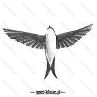 Ptak z rozłożonymi skrzydłami