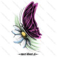 Różowy motyl na stokrotce