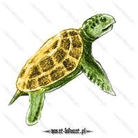 Zielony żółw ze złotą skorupą