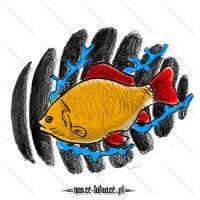 Żółto-czerwona ryba