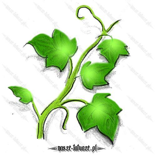 Zielony bluszcz